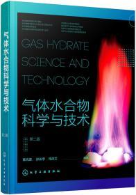 气体水合物科学与技术(第二版)