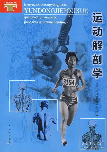 运动解剖学