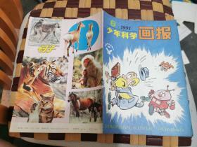 少年科学画报1991年第6期