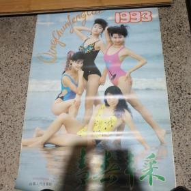 1993年青春风采泳装美女挂历