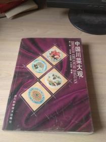 中国川菜大观(第一集)