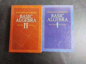 Basic Algebra I II Second Edition 两本合售