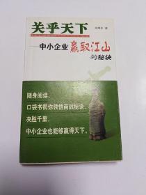 关乎天下:中小企业赢取江山的秘诀  (正版,无字迹划线)