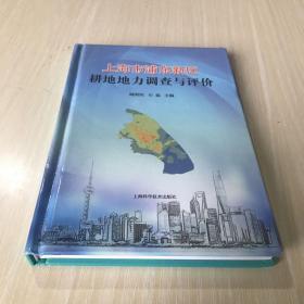 上海市浦东新区耕地地力调查与评价