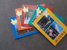 云南省中小学省情教育丛书(小学部分:光辉的史迹、灿烂的文化、神奇的土地、发展的经济、众多的民族)  5本合售
