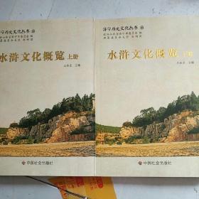 济宁历史文化丛书23:水浒文化概览 上下册