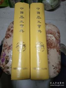 中国养生宝典 上下 两册全