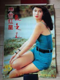 1995年《港台红星》挂历 全张曼玉 王祖贤 刘德华等 塑料薄膜