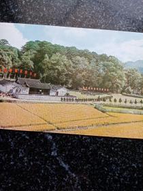 纪念邮戳明信片一枚