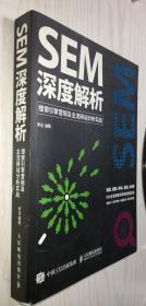 SEM深度解析 搜索引擎营销及主流网站分析实战 正版新书