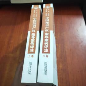 中国知识产权指导案例评注  (上下卷)