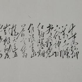 毛体书法 敬书毛主席诗词《七律.送瘟神》xd165