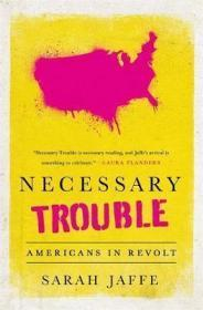必要的麻烦:美国人造反了  Necessary Trouble : Americans in Revolt