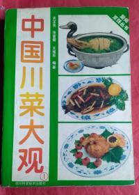中国川菜大观