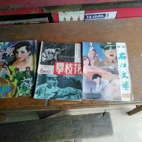 柳絮,攀枝花,右江文艺三本八十年代杂志