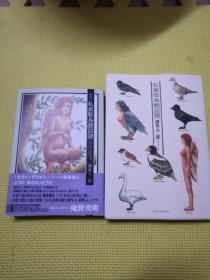 私家版鸟类图谱日文(两册)