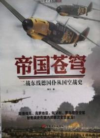 帝国苍穹 二战东线德国仆从国空战史
