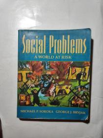 【英文原版】Social Problems: A World at Risk