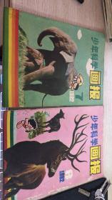 少年科学画报1982 7.8  两本合售