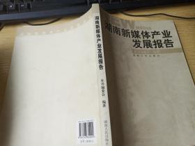湖南新媒体产业发展报告