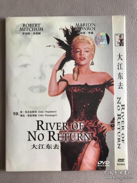 大江东去 DVD 电影