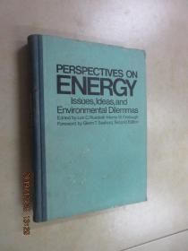 英文书  能源展望 《争论 概念和环境困境  》  第2版   共591页 精装本