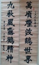 中国书协理事,北京书协副主席,著名书法家张书范对联书法