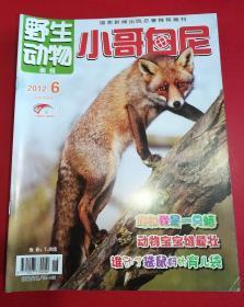 野生动物画报 小哥白尼(2012-06)