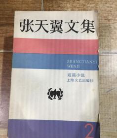 张天翼文集(2)