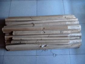"""五、六年代山西大学毛笔手绘""""生物挂图""""挂轴宣纸装裱.35轴(尺寸155厘米.108厘米)"""