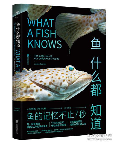 鱼什么都知道