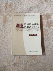 湖北县域经济发展财政政策研究(正版现货)