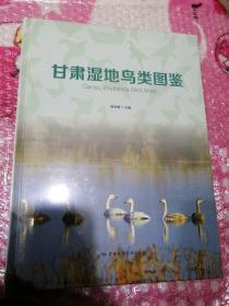 甘肃湿地鸟类图鉴