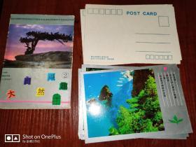 明信片:大自然撷取(2)全套十枚湖南省新闻出版局