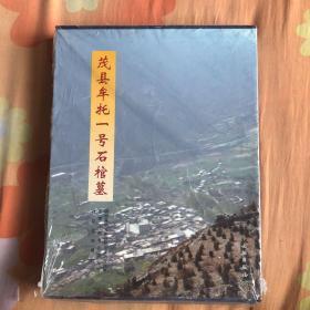 茂县牟托一号石棺墓  (货号B6)
