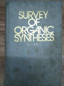Survey of organic syntheses Vol 2