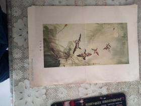 月夜飞凫(王渔父作 朝花美术1955年出版)一版一印,印数30000