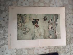 拾蘑菇(方增先作 朝花美术1955年出版)一版一印,印数15000