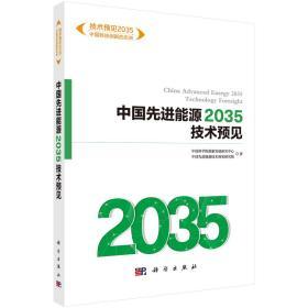 中国先进能源2035技术预见