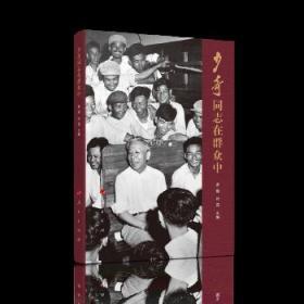 正版现货 少奇同志在群众中 罗雄 叶茂  人民出版社 9787010213323 书籍 畅销书