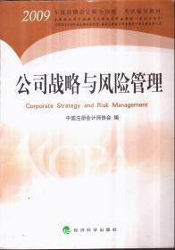 2009年 公司战略与风险管理