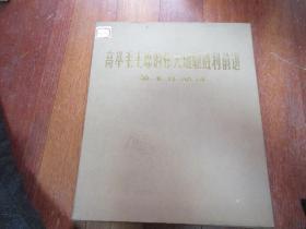 高举毛主席的伟大旗帜胜利前进美术作品选(活页画册)【一套全(100张)】