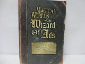 Magical Worlds of the Wizard of Ads 毛边书