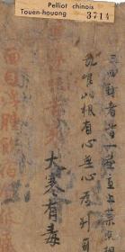 敦煌遗书 法藏 P3714李勣 新修本草手稿。纸本大小31.33*1098.61厘米。宣纸原色微喷印制,