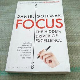 FOCUS:  THE HIDDEN DRIVER OF EXCELLENCE(聚焦:卓越的隐藏驱动力)平装没勾画