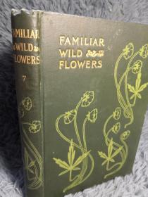 大量彩色插图《植物图鉴》第七卷 FAMILIAR WILD FLOWERS. FIGURED AND DESCRIBED BY F.EDWARD HULME,F.L.S F.S.A.  19.7X13.6CM