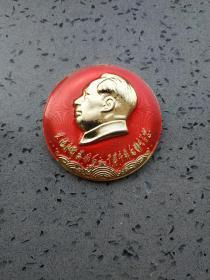 文革时期毛主席和林彪手书题词像章