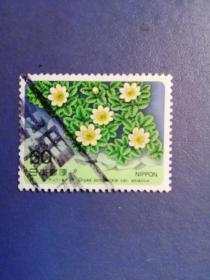 外国邮票  日本 邮票   花卉  (信销票)