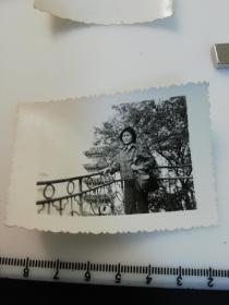 七八十年代黑白  美女  老照片 1张 黄山