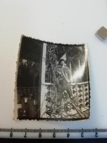 七八十年代黑白  美女  老照片 1张 景区